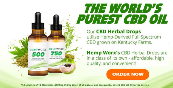 Daily Choice Hemp Oil in Wausau.